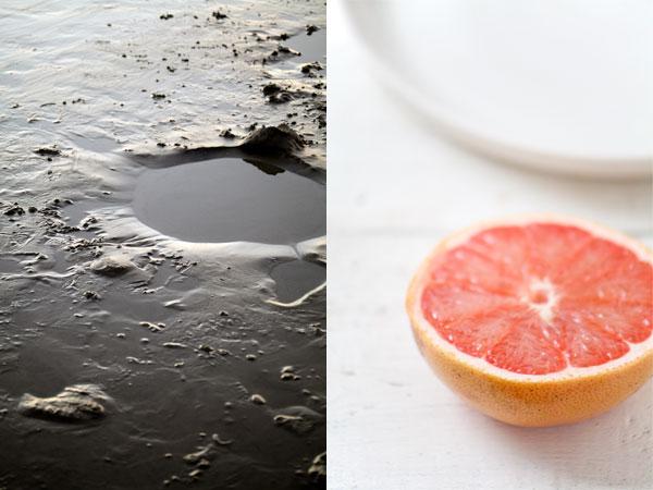 Grapefruit, Pomegranate, and Champagne Sorbet – LEMON FIRE ...