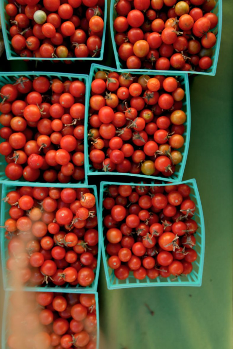 tomato-babies-and-strand