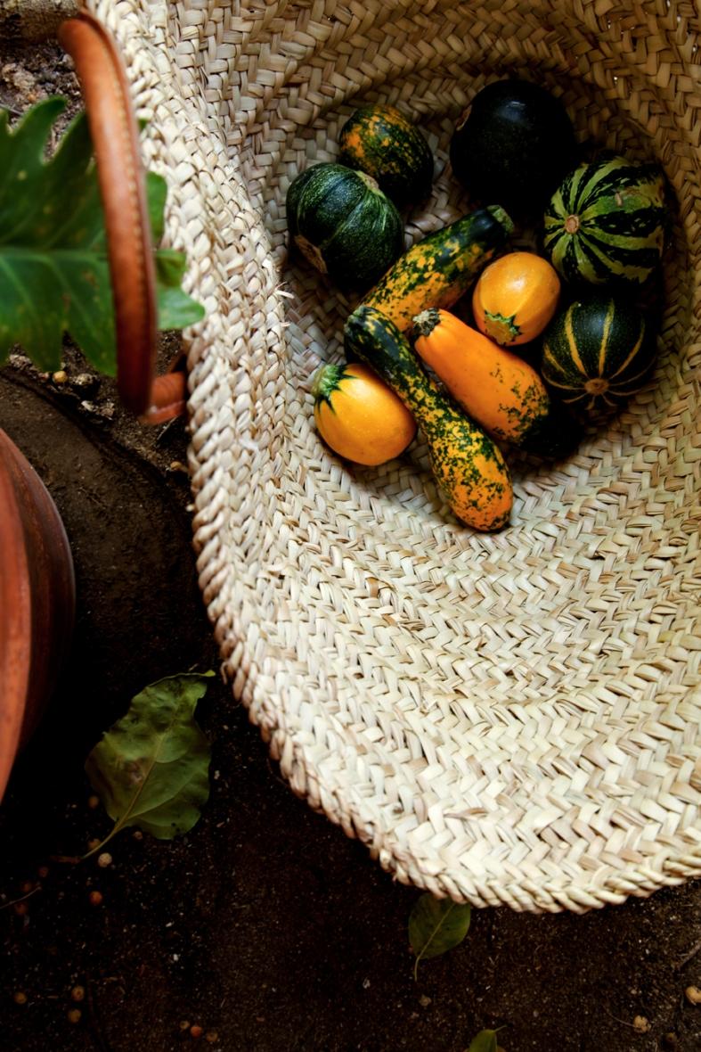 zucchinibasket3