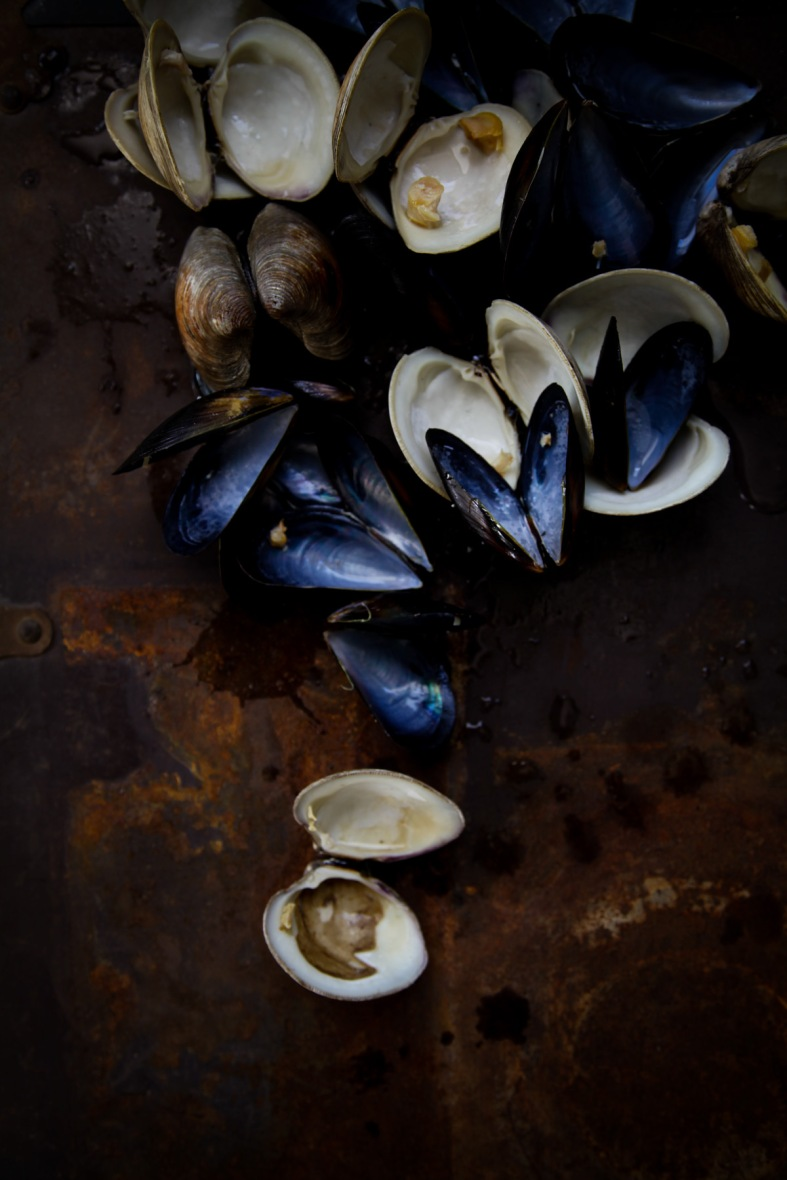 Clams-and-Mussels