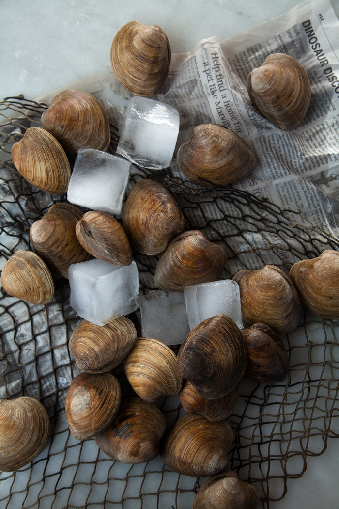 Little-Neck-Clams