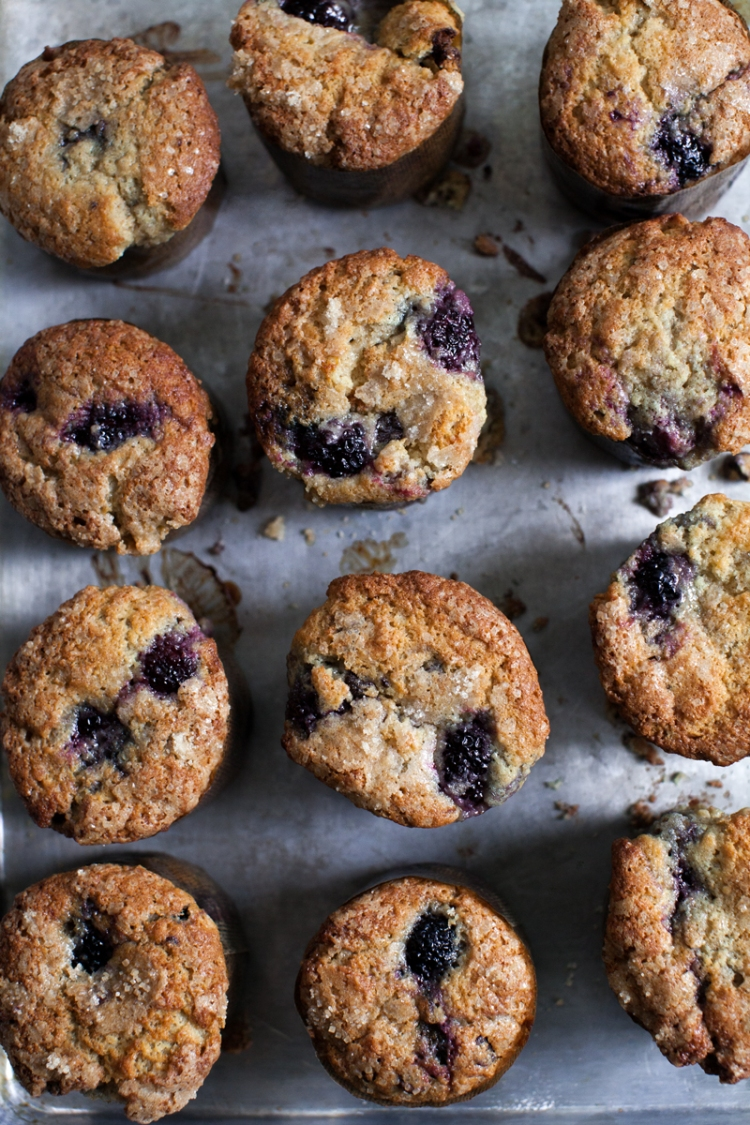 Blackberry Chocolate Chip and Cream Muffins - Lemon Fire Brigade